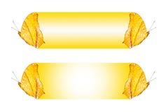 Textboxdesign mit Schmetterling das Kreuzer Vindula-dejone erotella, Isolat auf Weiß Lizenzfreies Stockbild