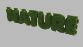 Texte 3D de nature Photos stock