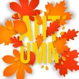 Texte d'automne avec des feuilles De nouveau à l'école illustration stock
