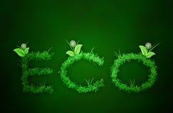 Texte d'Eco d'herbe à l'arrière-plan vert Image stock