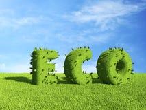 Texte d'ECO sur le champ d'herbe. Écologie 3D Image stock