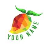 Texte de cubisme de mangue Image stock