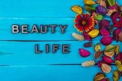 Texte de la vie de beauté sur le bois bleu avec la fleur photographie stock libre de droits