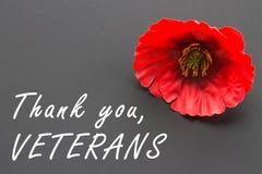 Texten tackar dig veteran som är skriftliga i en svart tavla och en röd vallmo på en lantlig träbakgrund Royaltyfri Foto