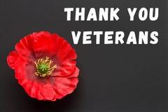 Texten tackar dig veteran som är skriftliga i en svart tavla och en röd vallmo på en lantlig träbakgrund Royaltyfri Bild