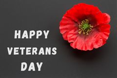 Texten tackar dig veteran som är skriftliga i en svart tavla och en röd vallmo på en lantlig träbakgrund Fotografering för Bildbyråer