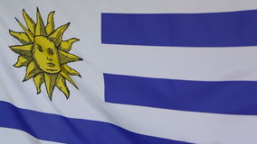 Textile flag of Uruguay in slow motion. Textile flag of Uruguay in a slow motion stock footage