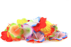 Textile flowers isolated Stock Image