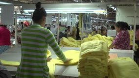 Textile Garment Factory Workers: MS green worker sorts yellow garments stock video footage