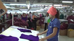 Textile Garment Factory Workers: WS pan to worker sorting purple garments stock video footage