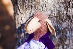 Textile handmade sheep in dress Royalty Free Stock Images