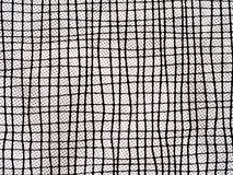 Abstract background lines and dots. Textile macro detail. Interesting black and white background Royalty Free Stock Photo