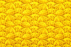 Textile with ornament in form of hills. Yellow textile with patterns in form of hills or waves Royalty Free Stock Images