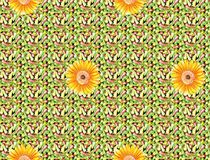 Beautiful colorful textile print design with flower and pattern. Textile print design Royalty Free Stock Photo