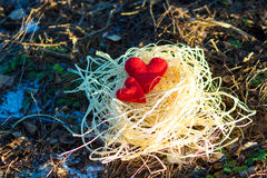 Textile red heart in a nest of raffia. On a background of forest land Stock Photography