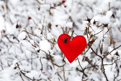 Textile red heart on snowy tree. Bush in winter Stock Images