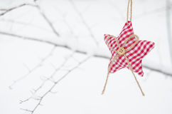 Textile red star on snowy tree brunch Stock Photos
