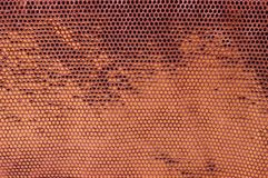 Textile Texture. Perforated brown and gold textile texture Royalty Free Stock Photos