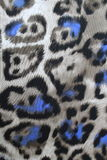 Textiles leopard royalty free stock photos