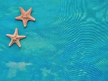Textiles turquoise sea background  with the starfish. Royalty Free Stock Image