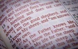 Texto da Bíblia - eu sou o bom pastor - 10:14 de John Imagens de Stock Royalty Free