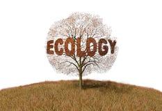 Texto da ecologia em uma árvore ilustração do vetor