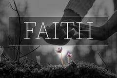 Texto da fé sobre as mãos que consolidam uma flor fotos de stock royalty free
