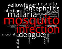 Texto da informação das doenças da infecção do mosquito Fotografia de Stock