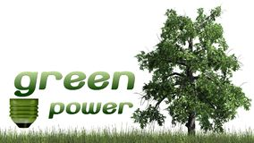 Texto das energias verdes e árvore - conceito da ecologia Fotos de Stock Royalty Free