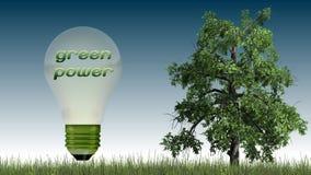 Texto das energias verdes na ampola e na árvore - conceito da ecologia Imagens de Stock Royalty Free