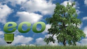 Texto de Eco e árvore - conceito da ecologia Fotos de Stock