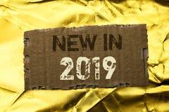 Texto de la escritura de la palabra nuevo en 2019 Concepto del negocio para moderno que viene de la era de la última del año del  Foto de archivo libre de regalías