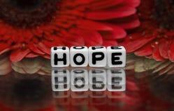 Texto de la esperanza con las flores rojas Foto de archivo libre de regalías
