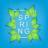 Texto de la primavera con las hojas y el marco realistas del verde Imagen de archivo libre de regalías