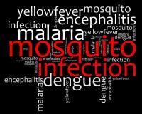 Texto de las enfermedades Info de la infección del mosquito Fotografía de archivo