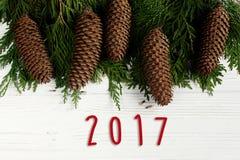 texto de 2017 muestras en ramas de árbol verdes con el marco de los conos del pino en s Imagen de archivo