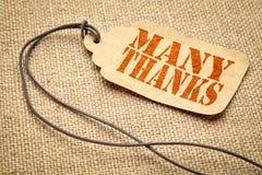 Texto de muitos agradecimentos em um preço fotos de stock royalty free