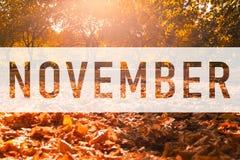 Texto de saludo de noviembre en las hojas coloridas de la caída libre illustration