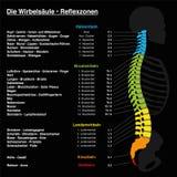 Texto del alemán de la carta del Reflexology de la espina dorsal libre illustration
