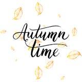 Texto del tiempo del otoño - letras pintadas a mano con las hojas anaranjadas Imagen de archivo libre de regalías