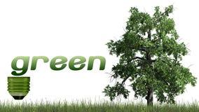 Texto e árvore verdes - conceito da ecologia Imagem de Stock Royalty Free