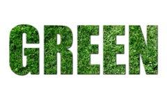 Texto ecológico ilustração stock