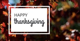 Texto feliz da ação de graças com árvores e folhas no outono Fotos de Stock