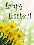 Texto feliz de pascua con los narcisos amarillos y el fondo abstracto soleado verde del bokeh Foto de archivo