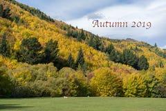 Texto 2019 - montanhês do outono de Autumn Foliage On A perto de Arrowtown em Nova Zelândia foto de stock