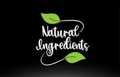 Texto natural de la palabra de los ingredientes con diseño verde del icono del logotipo de la hoja stock de ilustración