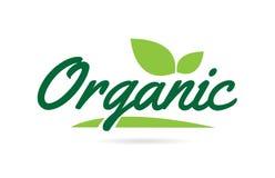 texto orgânico da palavra escrita da mão da folha verde para o projeto do logotipo da tipografia ilustração royalty free