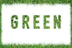 Textord GRÄSPLAN från isolerat grönt gräs Royaltyfria Bilder