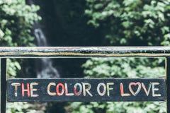 Textotez la couleur de l'amour dans la jungle de l'île de Bali Amour dans la forêt tropicale Photographie stock