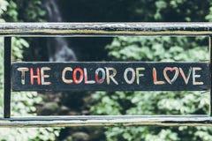 Textotez la couleur de l'amour dans la jungle de l'île de Bali Amour dans la forêt tropicale Image stock